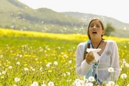 دمنوشهای مناسب برای حساسیت بهاره و فصلی